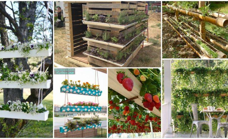 Gutter Garden Ideas Feat