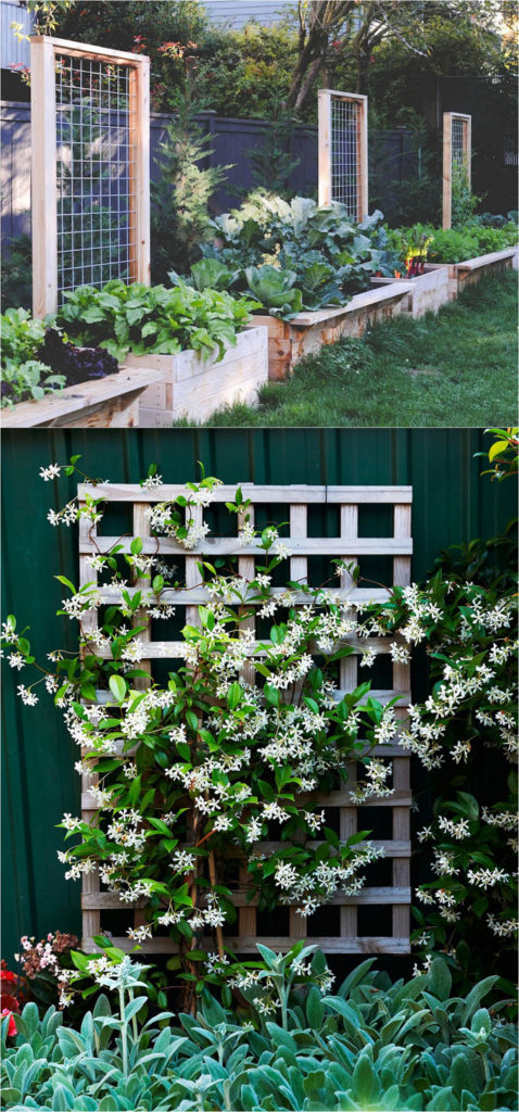 20 cheap and easy diy trellis vertical garden structures for Cheap vertical garden