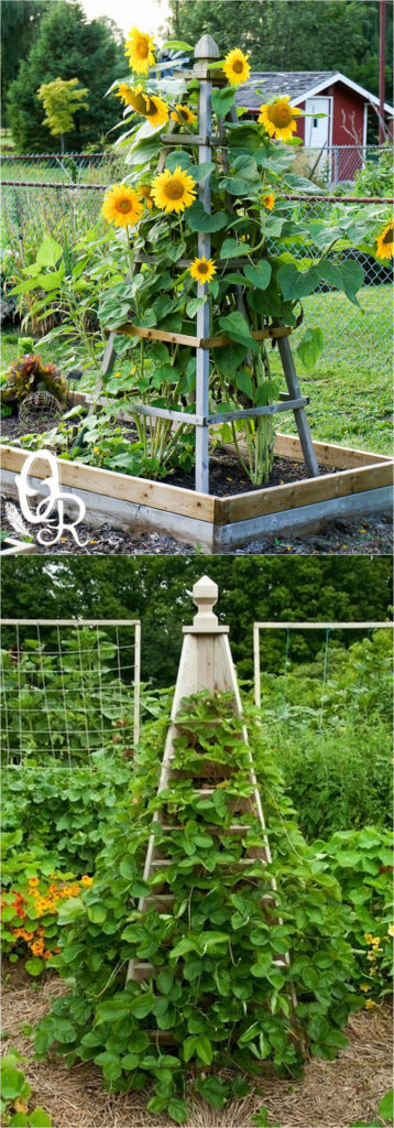 20 Cheap And Easy Diy Trellis Amp Vertical Garden Structures