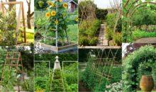 20 Cheap And Easy DIY Trellis & Vertical Garden Structures