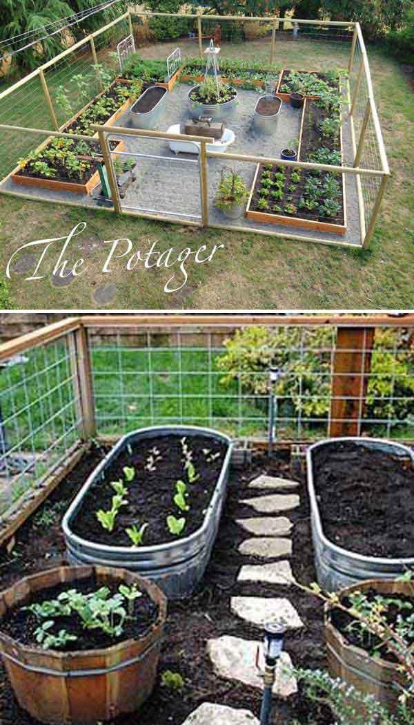 Grow Vegetable Garden 01