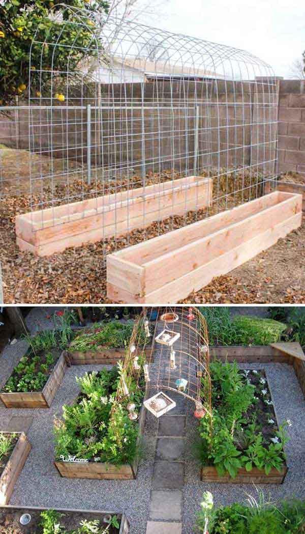 Grow Vegetable Garden 02