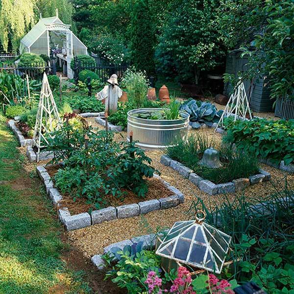 Grow Vegetable Garden 04