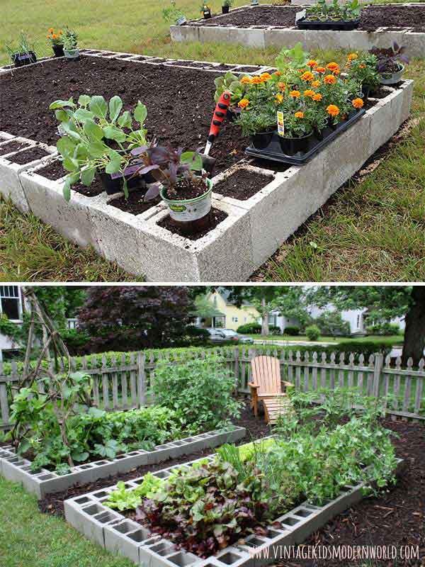 Grow Vegetable Garden 11