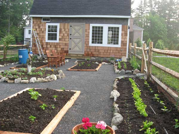Grow Vegetable Garden 14