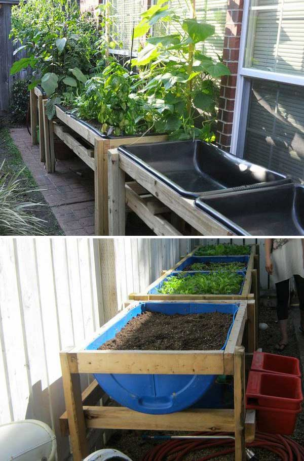Grow Vegetable Garden 16