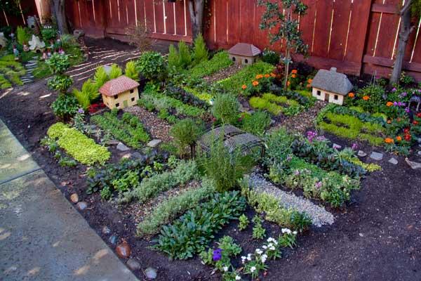 Grow Vegetable Garden 21