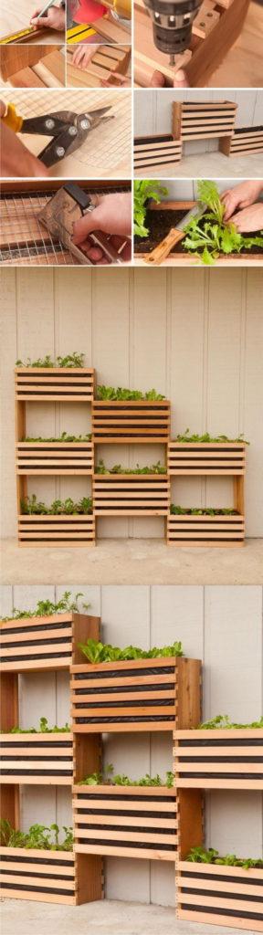 Plant a Vertical Garden 11