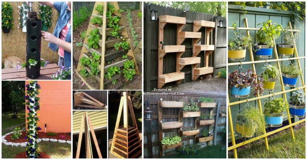 Plant a Vertical Garden Feat