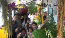 Is Taipei's New 'Forest Bus' the Best Bus in the World?