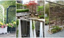 17 Fascinating and Low Budget Ideas for Your Yard and Patio Privacy