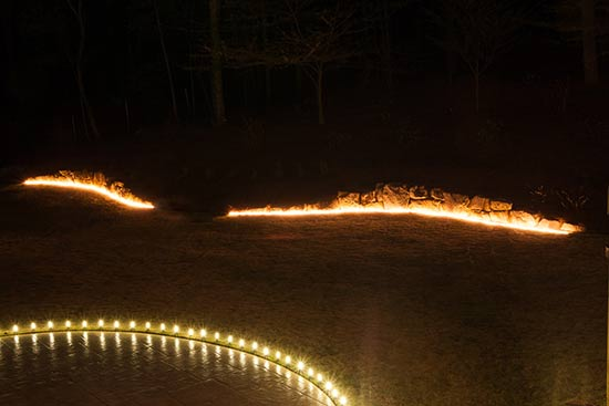 Ingenious Ways To Use Rope Light In Your Backyard