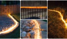 Ingenious Ways to Use Rope Light In Your Backyard!