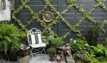 DIY Decorative Garden Wall Using Ivy Hedge Fence