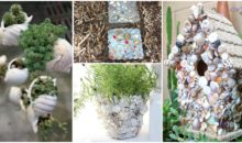 Sea In Your Garden: Beach & Sea Themed Garden Décor Ideas