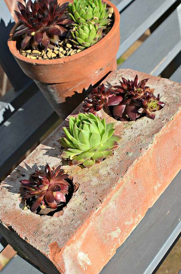 Cool DIY Ideas For Creating Garden or Backyard Projects ... on Brick Ideas For Backyard id=49891
